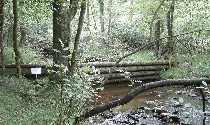 Image: Forestry England - Cropton forest - Woody leaky dam